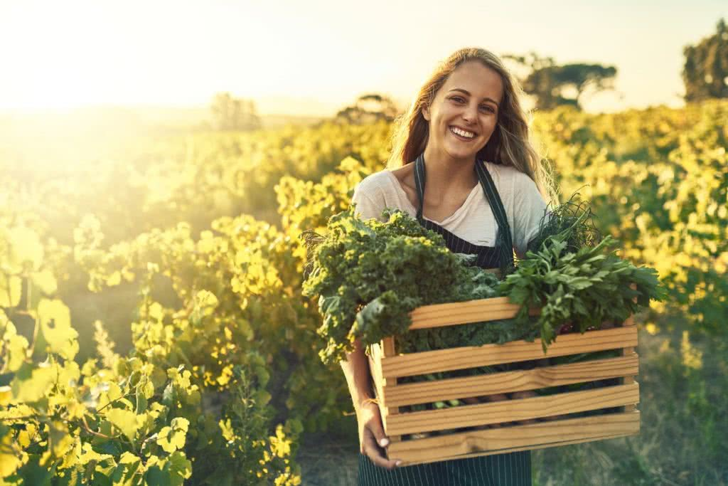 farm growth from section 179 tax deduction
