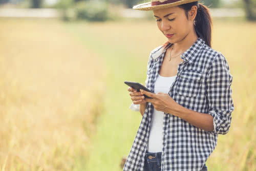 Female farmer uses agriculture apps to manage her farm